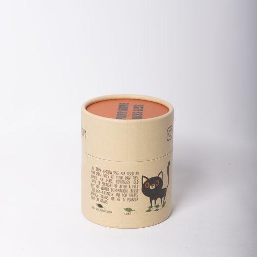 cat-toy-Catnip-Jar